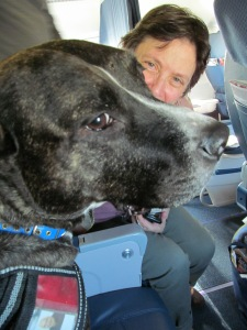 On a flight home from Philadelphia, This recent widow was thrilled to have Ruby in the middle seat!