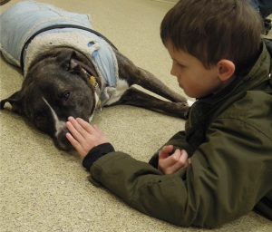 "From a parent: ""Turner has had a fear of dogs in the past. We were very happy to see how calm he was around Ruby."""